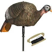 Lucky Duck Lucky Hen Motion Turkey Decoy